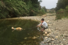 Ana loves her river walks - dogs for adoption SOS Animals Spain