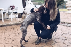 Bea and volunteer - dogs for adoption SOS Animals Spain