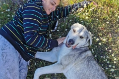 Lucky is a friendly affectionate girl - dogs for adoption SOS Animals Spain