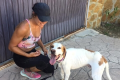 Oscar and volunteer Vian on his day of arrival - dogs for adoption SOS Animals Spain