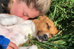 Long term resident Reina cuddling with one of volunteer Karin - sponsor dogs at SOS Animals Spain